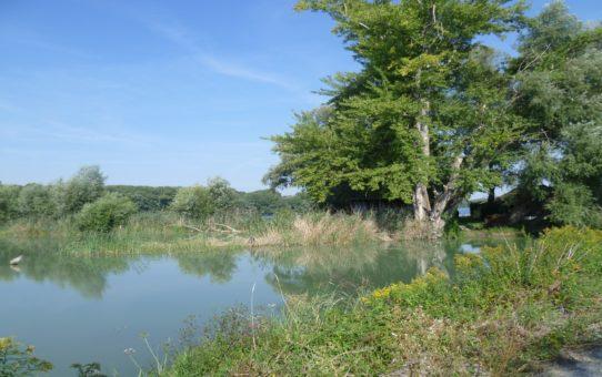 Šulianské jezero